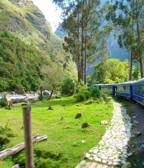 <span class='p-name'>Viajar en tren a Machu Picchu</span>