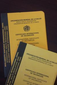 Si viajas solo a Cusco o a Machu Picchu, las vacunas no son necesarias.
